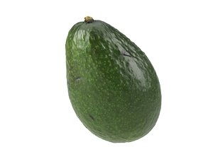 3D photorealistic scanned avocado