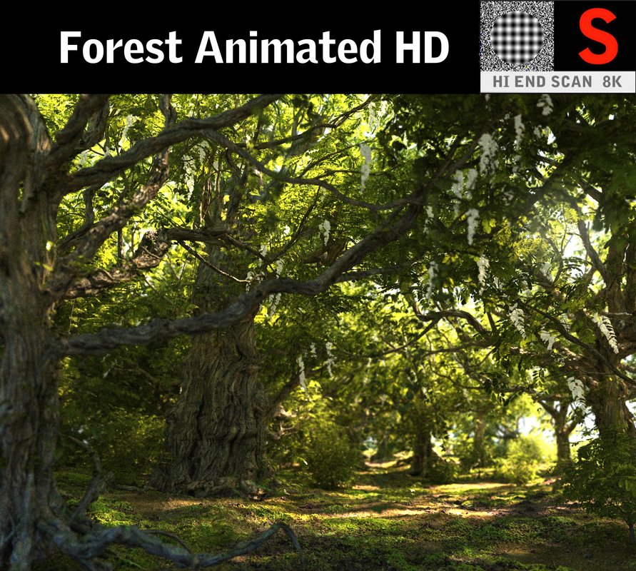 forest hd 3D model