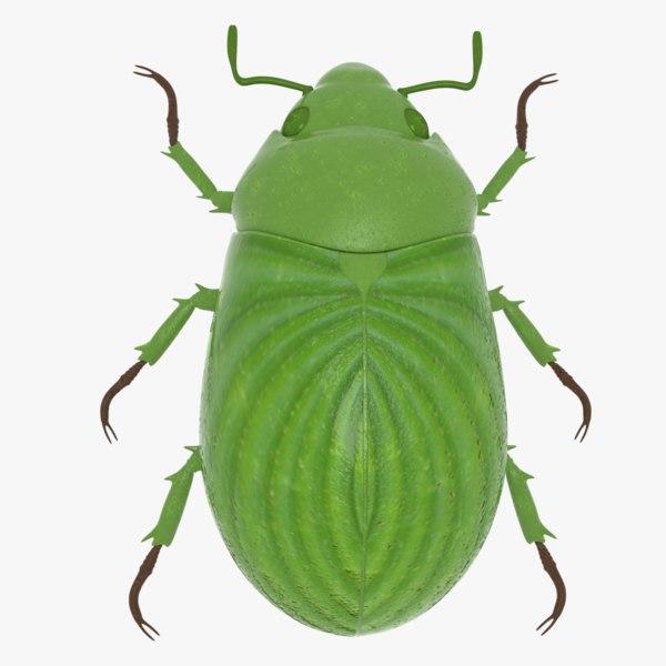 3D scarab beetle model