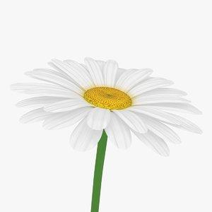 3D model daisy scanline