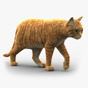 cat fur 2 model