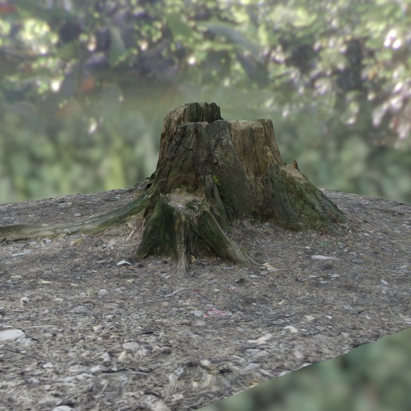 scan-based stump 3D