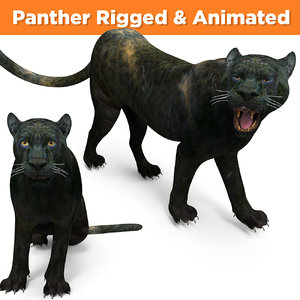 panther rigged animation 3D