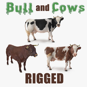 rigged bull cows 3D