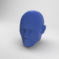 voxel head 3D