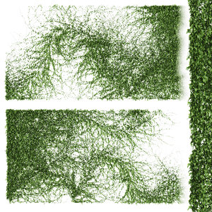 3D model set ivy walls