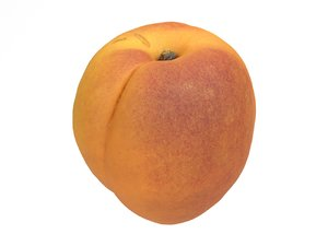 3D photorealistic scanned apricot