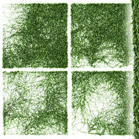 set ivy walls fence 3D model