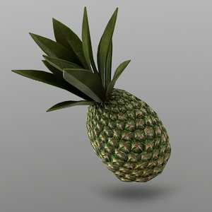 pineapple ready games 3D model