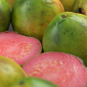 guava fruit 3D model