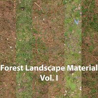 3D coniferous forest ground materials model