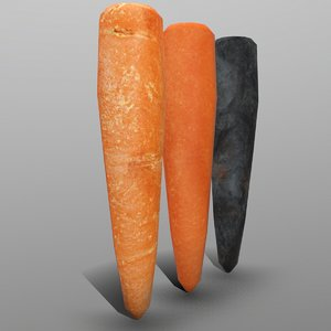 carrot ready games model