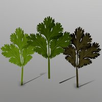 3D coriander ready games model