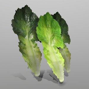 lettuce ready games model