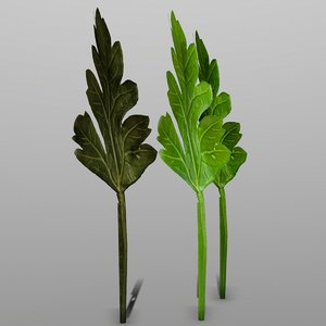 3D parsley ready games model