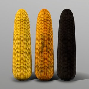 3D corn ready games