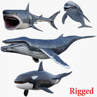 set rigged animals 3D model