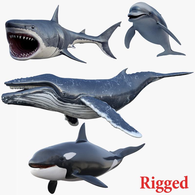 set rigged animals 3D model