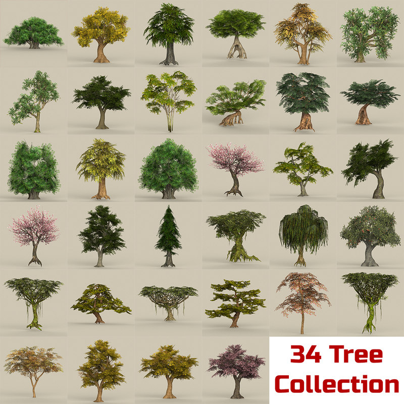 3D model biggest ready trees