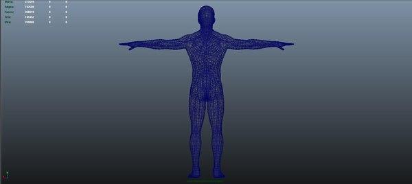 3D body nerves