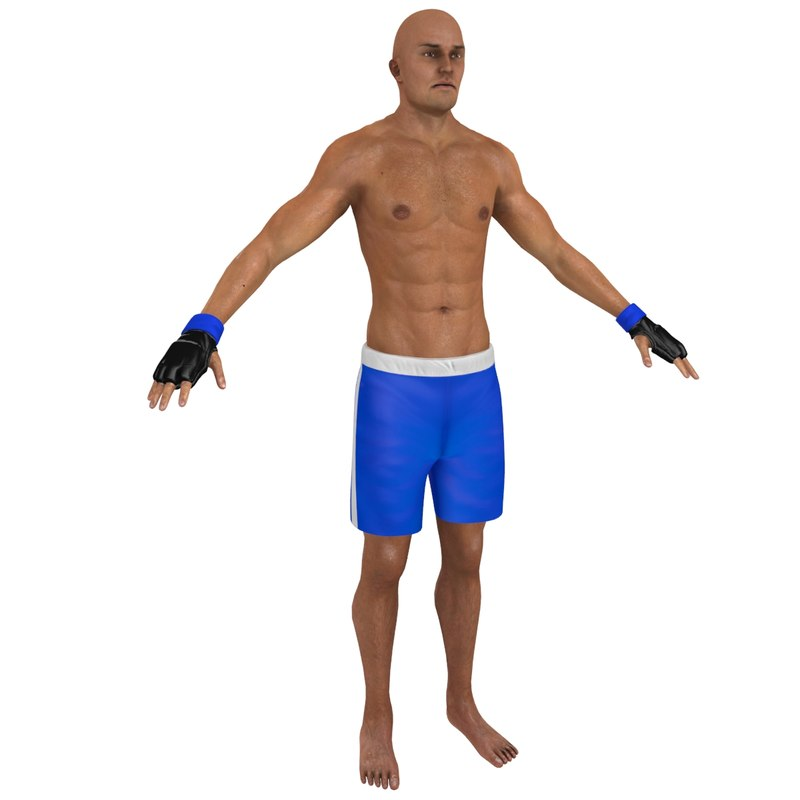 3D mma fighter