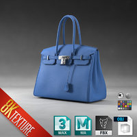 Hermes Birkin Hand Bag Purse