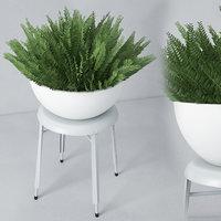 houseplant 22 3D