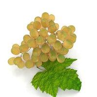 3D model grapes leaf white