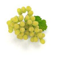3D grapes leaf green