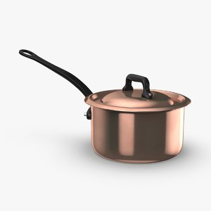 classical-cookware---9qt-saucepan 3D model