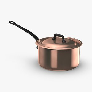 3D classical-cookware---5qt-saucepan model