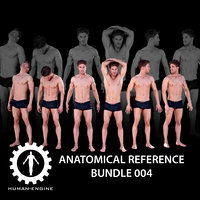 Anatomical Reference Bundle 004