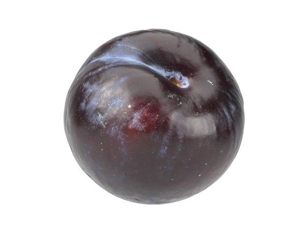 3D photorealistic scanned plum