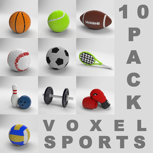 3D 10 pack voxel sports equipment