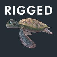 turtle karetta 3D