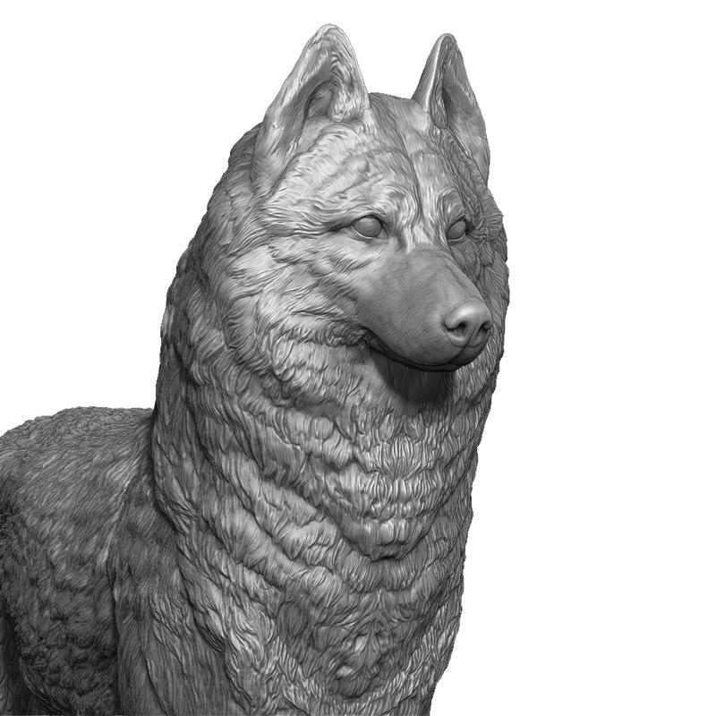 husky realistic 3D model
