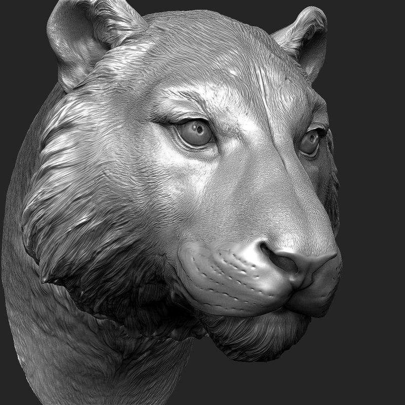 zbrush head 3d model