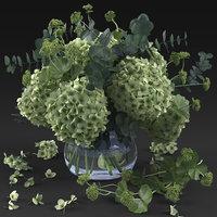 hydrangea 3D model