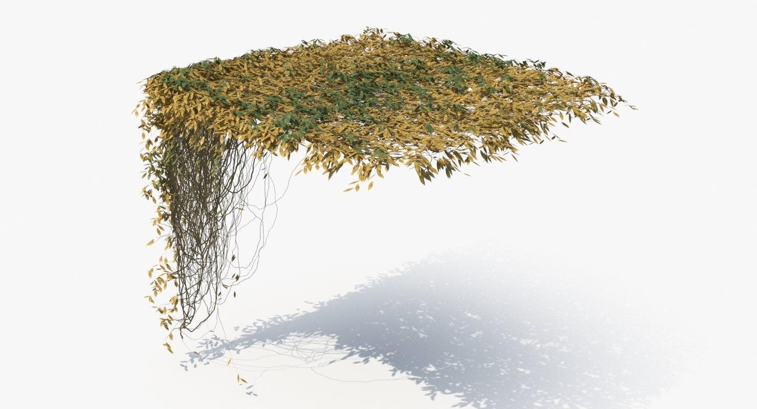 ivy 2 3D model