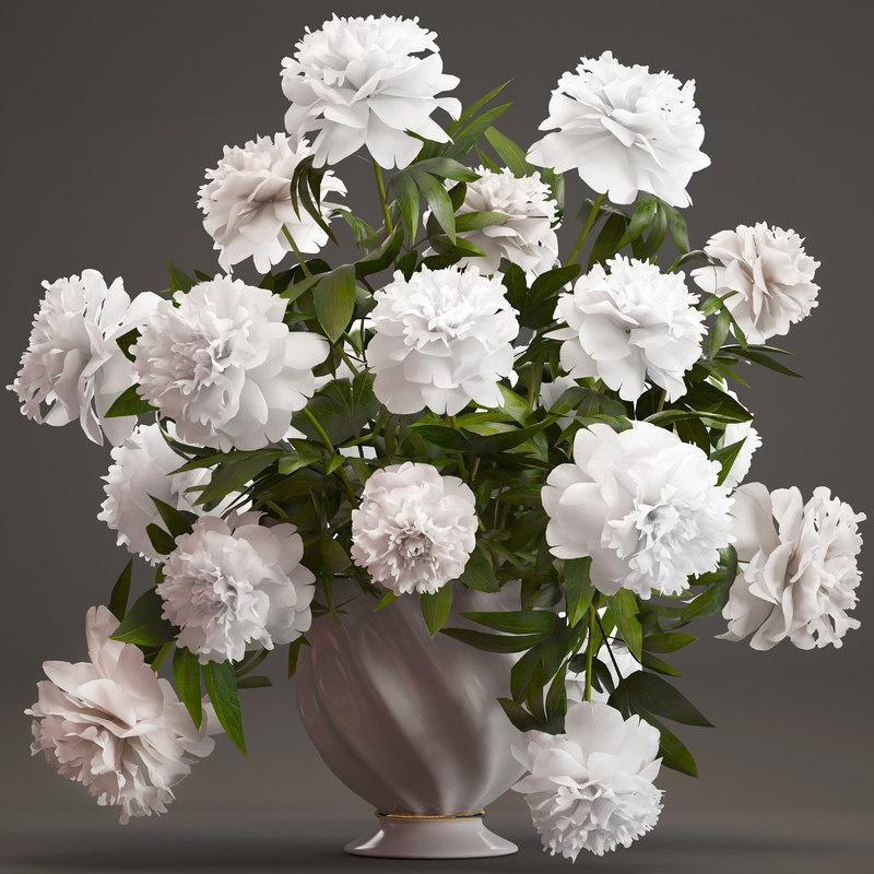 bouquet white peonies 3D model