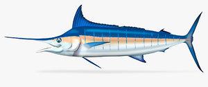 3D striped marlin kajikia audax model