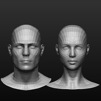 Base mesh male/female head