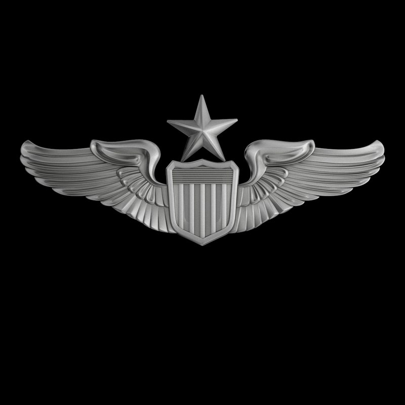 senior pilot usaf wings model