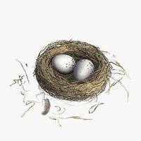 Nest(1)