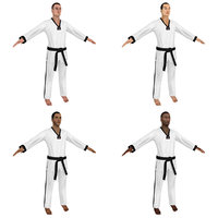 taekwondo martial artist 3D