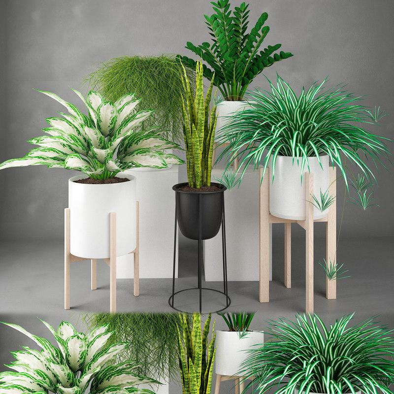 houseplant 23 3D