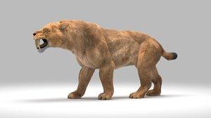 saber-toothed smilodon 3D model