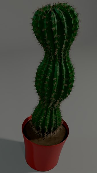 cactus pot 3D model