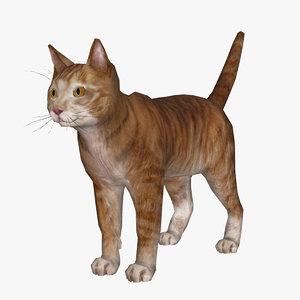 3D m1nn0taur cat model