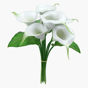 bouquet calla lilies 3D model